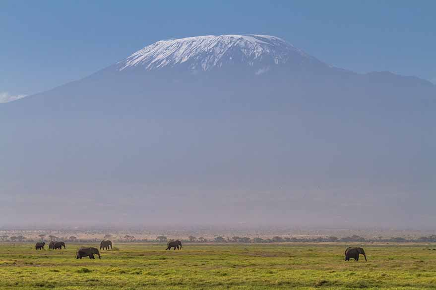 In the park Amboseli at the foot of Kilimanjaro, during your trip to Kenya to Word with Fred and Planet Ride