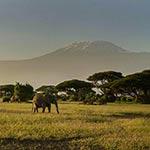 Votre premier jour en Kenya avec Planet Ride