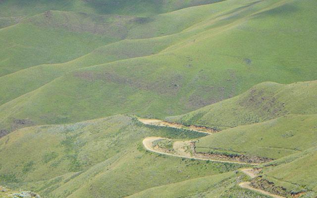 planet-ride-voyage-afrique-du-sud-moto-harley-davidson-cillines-vertes-route