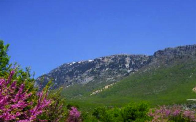 planet-ride-voyage-italie-quad-sicile-montagne-fleurs