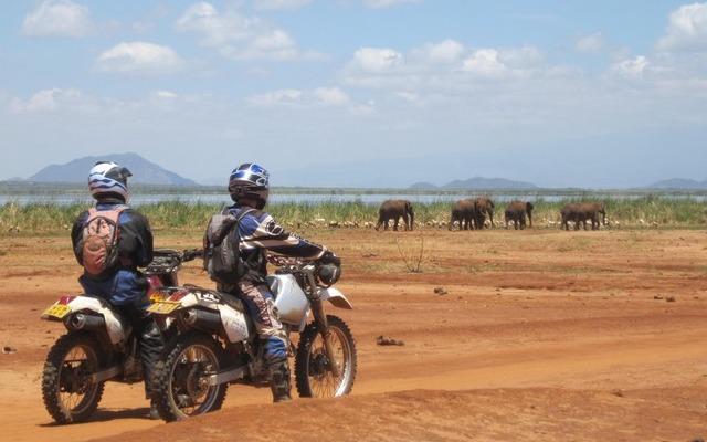 Éléphants au Lac Jipe, lors de votre voyage au Kenya à moto avec Planet Ride et Fred