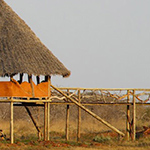 planet-ride-voyage-kenya-moto-matin-kiwanjani-eco-lodge