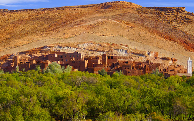 safari maroc