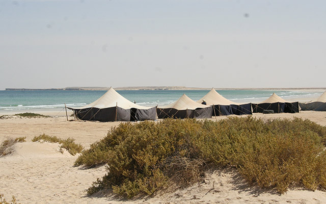 planet-ride-voyage-mauritanie-banc-arguin-camp-tentes-atlantique