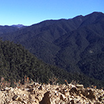 planet-ride-voyage-moto-bhoutan-montagnes-pins