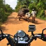 planet-ride-voyage-moto-sri-lanka-guidon-route-habitant-boeuf