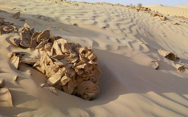 Dans le Sahara, lors de votre voyage en Tunisie en quad avec Planet Ride et Angela