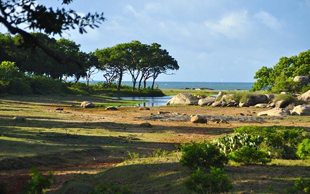 Au parc d'Udawalawe, lors de votre voyage au Sri Lanka à moto avec Planet Ride et Ophélie