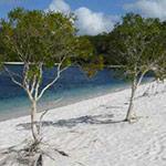 Fraser Island, camping car australie