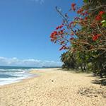 Voyage à Madagascar - À moto sur les plages de l'Océan Indien