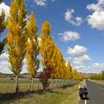 Sur la route, lors de votre voyage en Australie à moto avec Planet Ride