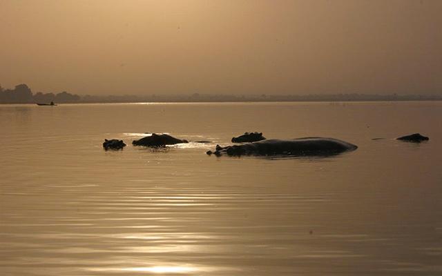 Voyage Togo avec Planet Ride