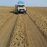 Sur les pistes, lors de votre voyage au Kenya en 4x4 avec Planet Ride