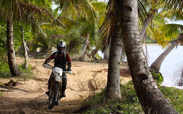 Voyage à Madagascar - motard entre les palmiers