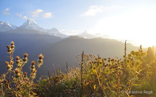 Vue sur l'Annapurna lors d'un voyage au Népal à moto avec Planet Ride