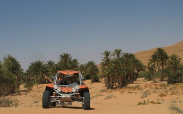 planet-ride-voyage-tunisie-buggy-sable-palmier-desert