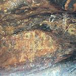 Peintures aborigènes à Uluru, lors de votre camping car australie