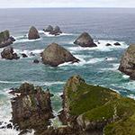 Nugget Point, lors de votre voyage en Nouvelle-Zélande en camping-car avec Planet Ride et Fabrice