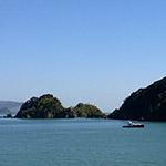 Paihia, lors de votre voyage en Nouvelle-Zélande en camping-car avec Planet Ride et Fabrice