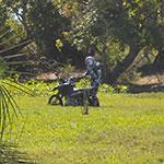 Végétation, lors de votre voyage à Madagascar à moto avec Planet Ride et Jean