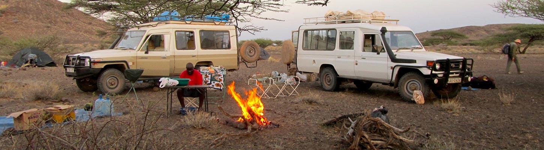 safari en tanzanie et safari au kenya