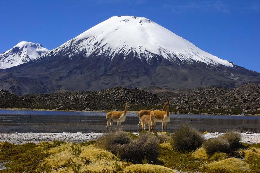 Au Cañon du Colca au Pérou, en voyage 4x4 au Pérou avec Laurent et Planet Ride