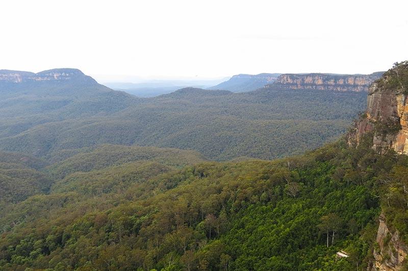 Les blue mountains, à découvrir lors d'un voyage en famille en australie avec Planet Ride et Fabrice