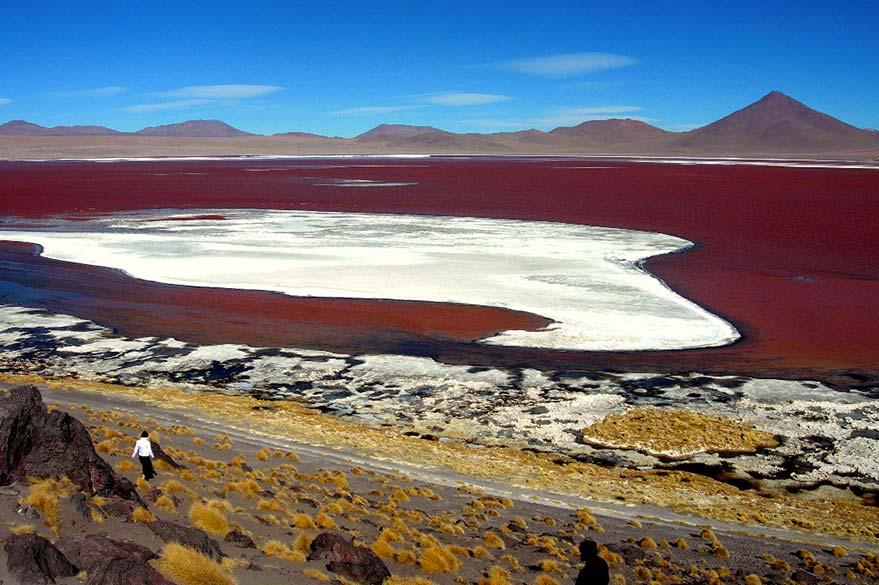 Dans le désert d'Atacama au Chili, en voyage 4x4 au Pérou avec Laurent et Planet Ride