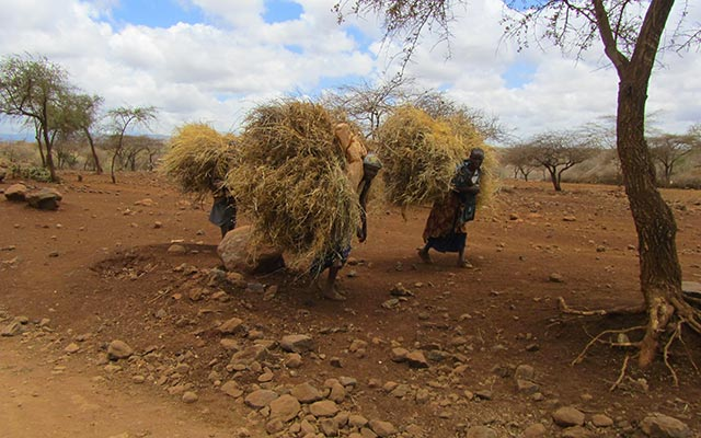 Aux environs du Lac Eyasi, lors de votre voyage au Kenya et en Tanzanie avec Planet Ride et Carlo
