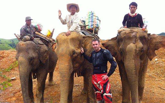 Rencontre avec des éléphants, lors de votre voyage au Laos à moto avec Planet Ride et Charly