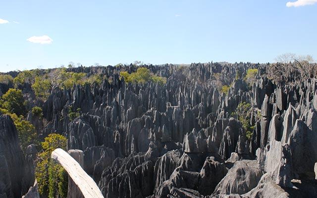 La réserve naturelle des Tsingy lors de votre voyage à Madagascar à moto avec Planet Ride et Jean