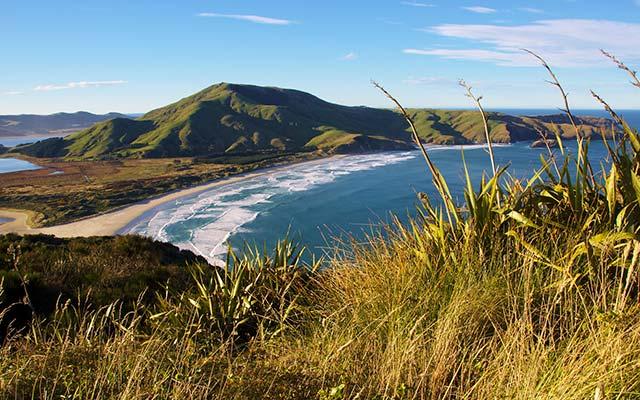 Péninsule d'Otago, lors de votre voyage nouvelle zelande camping car