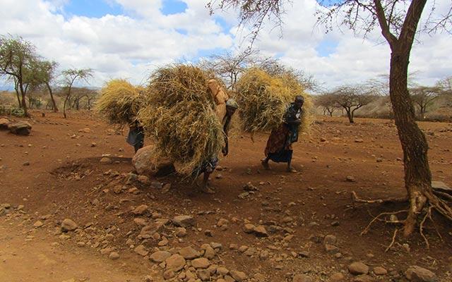 Voyage Tanzanie avec Planet Ride