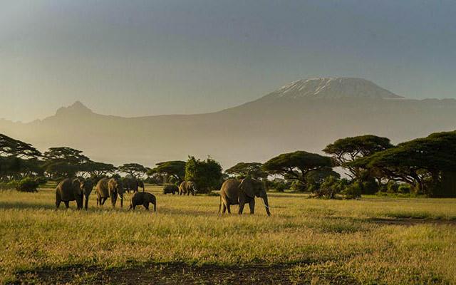Voyage Kenya avec Planet Ride