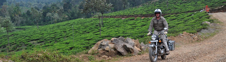 Voyage en Inde du Sud : Kerala et Tamil Nadu