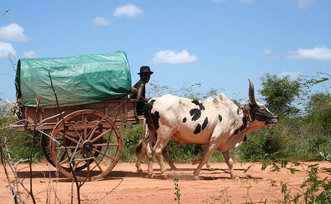 Les habitants de Madagascar en moto enduro lors de votre voyage avec Planet Ride