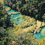 Mangrove lors de votre voyage au guatemala à moto avec planet ride