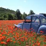 Planet Ride : voyage en 2CV en Provence