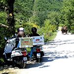 Voyage sur les routes de la provence en France avec Planet Ride
