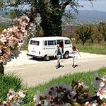 Voyage en camping-car en provence à Cadenet