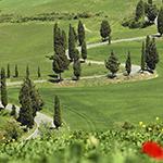 Voyage Moto Toscane Planet Ride