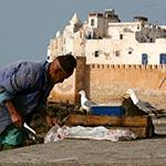 planet ride voyage au maroc en camping-car plage estouria