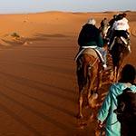 voyage planet ride à moto side car au maroc merzuga