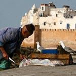 raid moto maroc essaouria