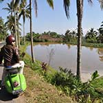 voyage en scooter à Bali Planet ride en scooter vers les rizières
