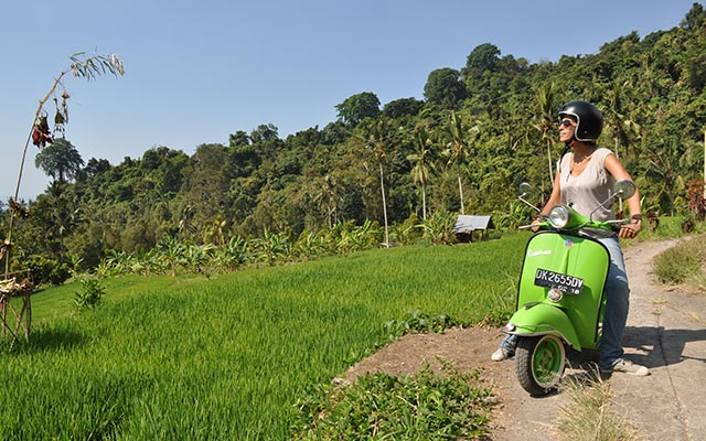 voyage en scooter à Bali Planet en scooter vert observation nature