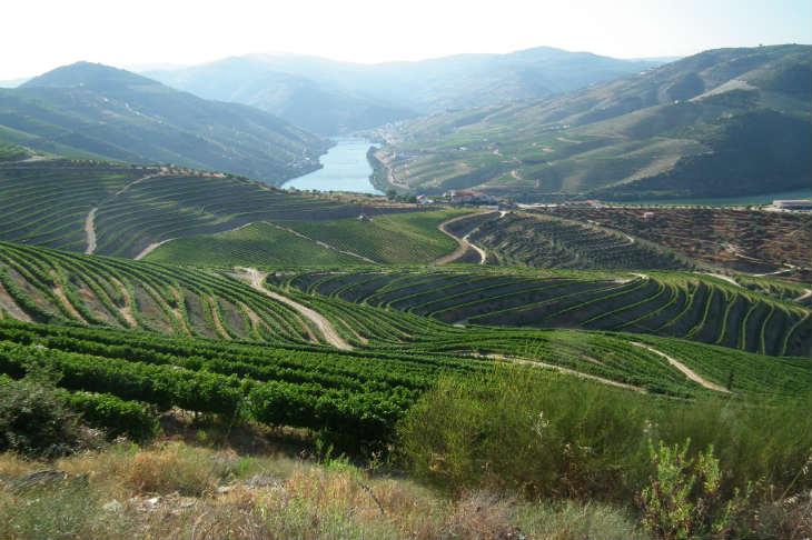 La vallée du Douro lors de votre voyage en Harley au Portugal avec Jean-François, Partenaire Spécialiste Planet Ride