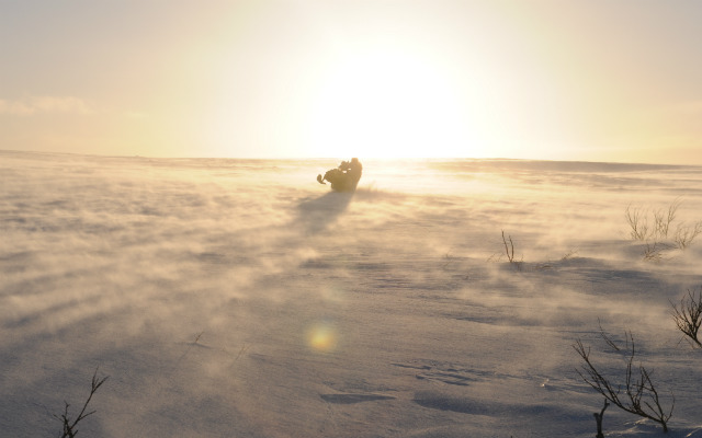 Travel in Finland with snowmobile with a local travel agency