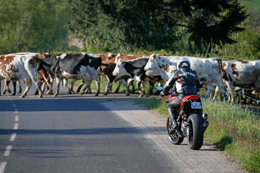 Voyage moto France Rencontre Locaux Planet Ride