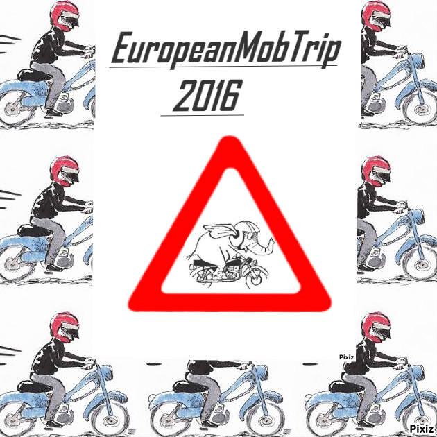 interview european mob trip